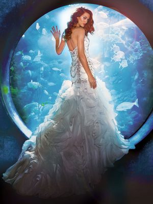 Disney Bridal Dresses – Bradgate Brides | Leicester | Leicestershire ...